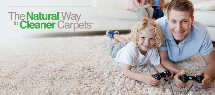 Complete Chem Dry Of Lake Orion Carpet Amp Upholstery Cleaning